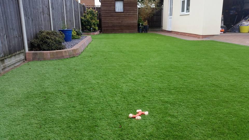 Dog friendly gardens